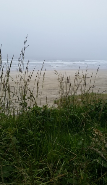 coast7